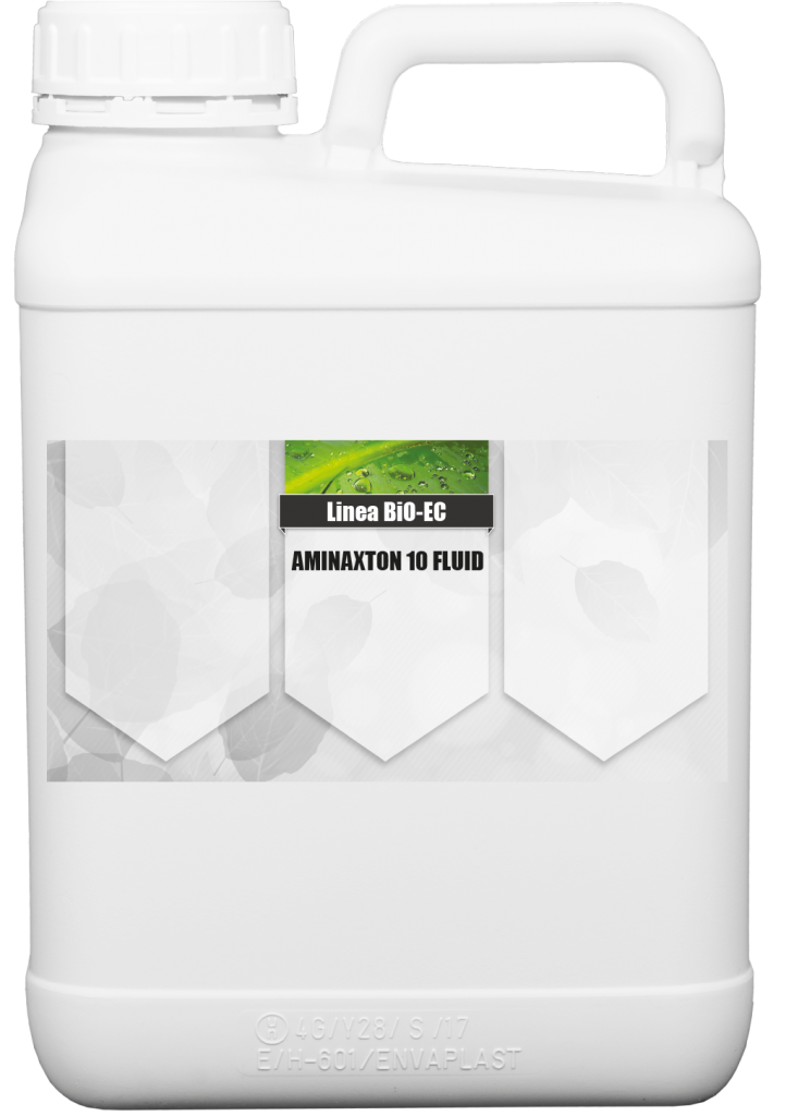 Aminaxton 10 Fluid